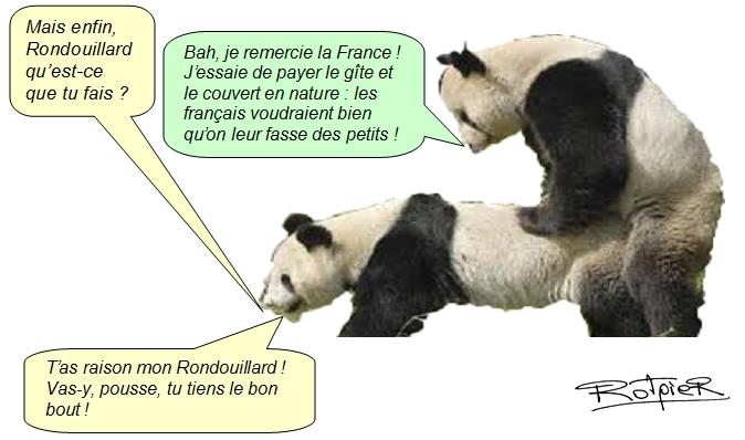 Pandi Panda Et Tralala Lactualité Vue Par Le Rotpier