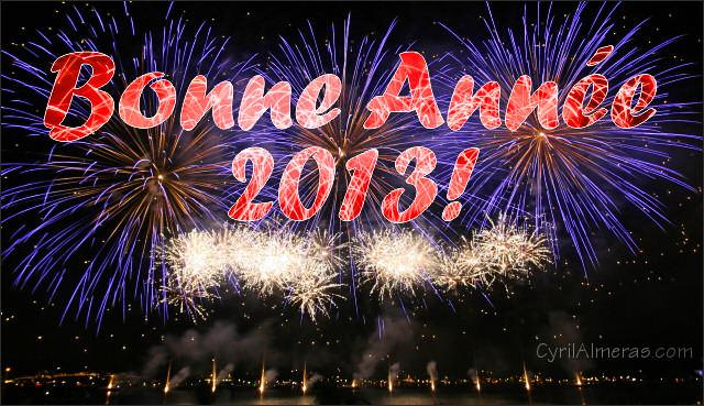 Voeux 2013