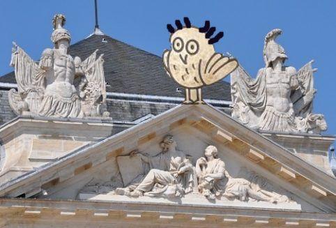 Chouette au Palais des grands Ducs