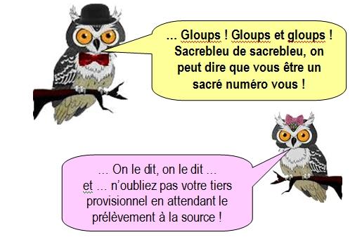 Les chouettes Chouettes 129 (4)