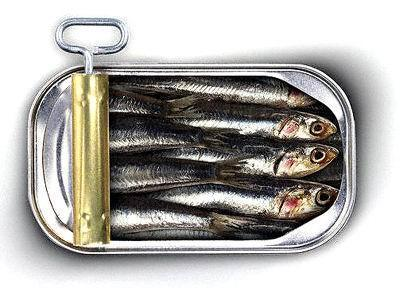 sardine-en-boite