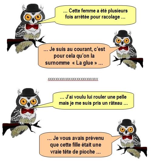 les-chouettes-chouettes-199