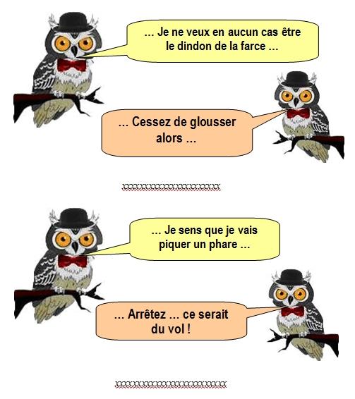 les-chouettes-chouettes-213