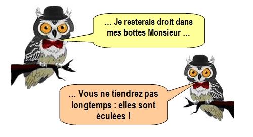 les-chouettes-chouettes-214