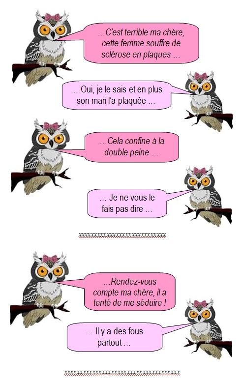 les-chouettes-chouettes-215-1