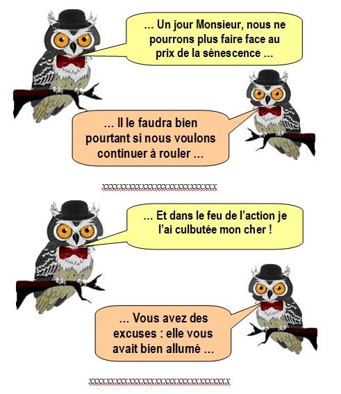 les-chouettes-chouettes-216