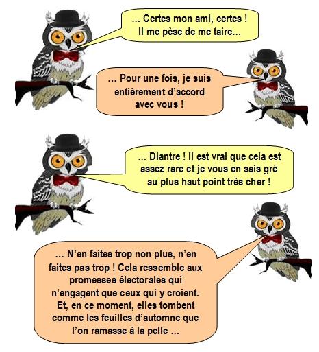 les-chouettes-chouettes-218-2