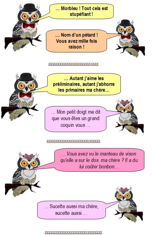 les-chouettes-chouettes-231
