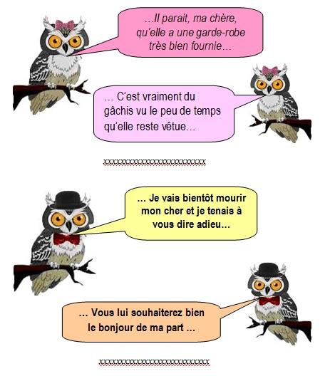 les-chouettes-chouettes-243