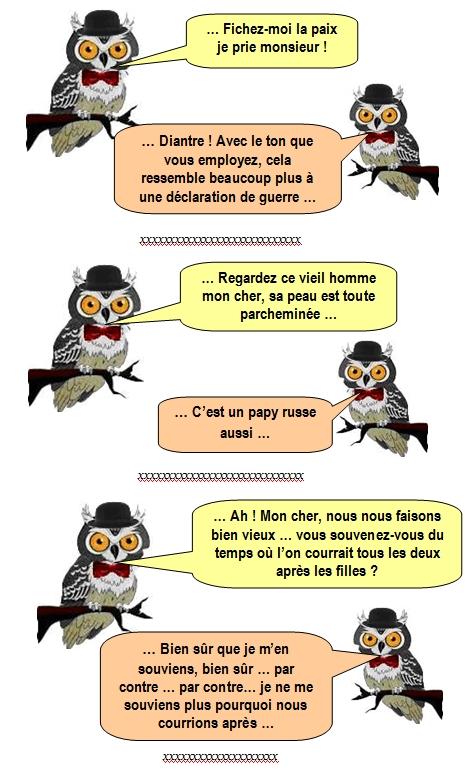 les-chouettes-chouettes-247