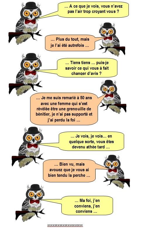 les-chouettes-chouettes-250
