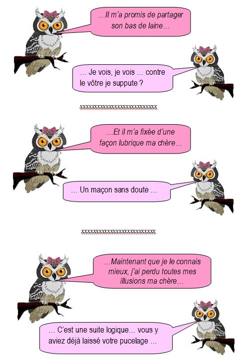 les-chouettes-chouettes-254